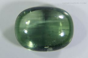 Cat's-Eye Zircon cabochon, Sri Lanka. 2.22 carats.